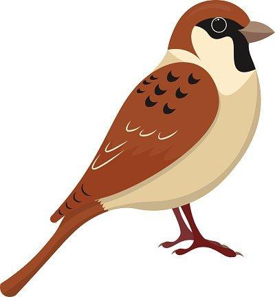 Vrabečci
