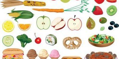 Informace o školním stravování